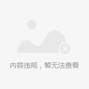 【苹果】电脑原装充电器